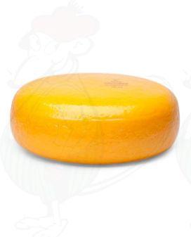 Goudse Kaas | Extra Kwaliteit | Hele kaas 4,5 kilo