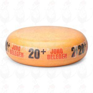 20+ Magere Kaas | Extra Kwaliteit | Hele kaas 12 kilo