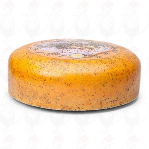 Mosterdkaas | Extra Kwaliteit | Hele kaas 9,2 kilo