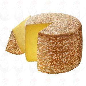 Cantal AOP / AOC Cheese