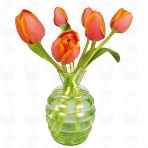 Tulpen Oranje Raamsticker - Flat Flower - 30 x 30 cm