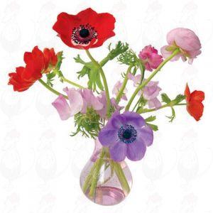 Veldbloemen Raamsticker - Flat Flower - 30 x 30 cm