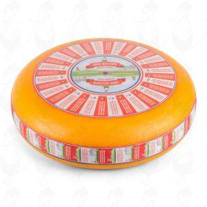 Jong Belegen Kaas | Extra Kwaliteit | Hele kaas 12 kilo