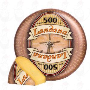 Landana 500 Dagen