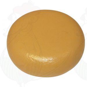 Kaasdummy ECO Gouda (model), 4kg