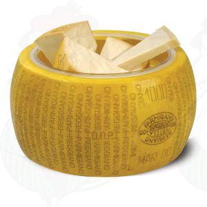 Kaasdummy Parmesan Reggiano, incl. schaal