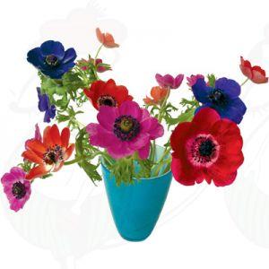 Anemonen blauw Raamsticker - Flat Flower - 30 x 37 cm